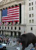 Bear on Wall Street
