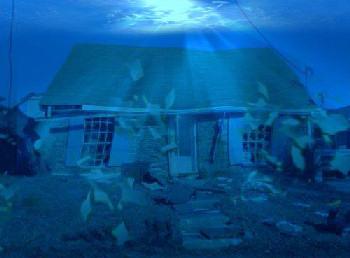 underwater home illustration