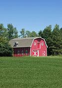 Nebraska - Soybean Field