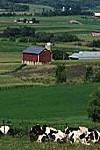 Wisconsin's Farmland